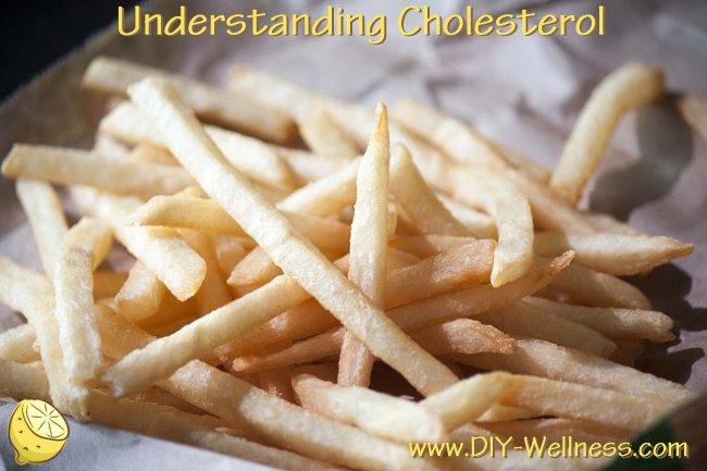 Understanding Cholesterol