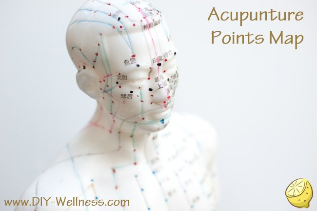 Acupunture Points Map