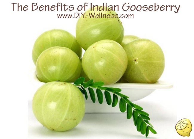 The Benefits of Indian Gooseberry