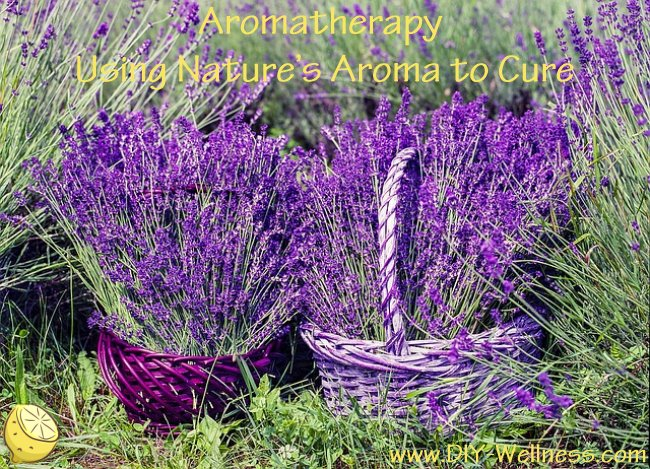 Aromatherapy – Using Nature's Aroma to Cure