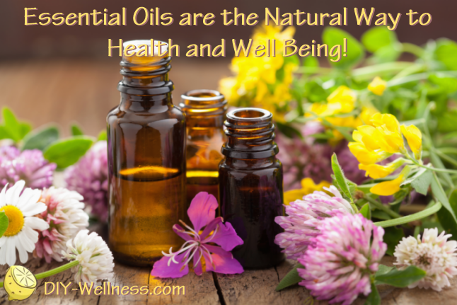 Essential Oils are the Natural Way to Health and Well Being! A free article from DIY-Wellness.com!